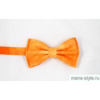 Бабочка Апельсин