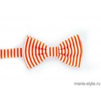 Бабочка Оранжевое море